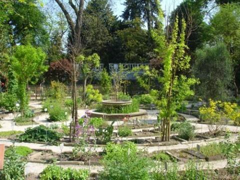 L orto botanico di padova - L orto in giardino ...
